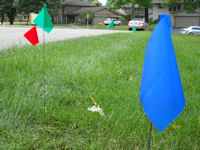 OUPS_flags_20110711.jpg