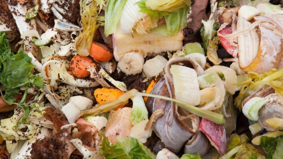 1533186637-food-waste-composting-960x540